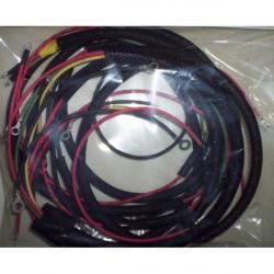 Harley 125s wiring harness...
