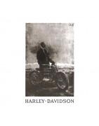Harley Civilian